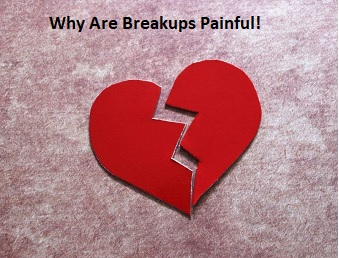 Why Are Breakups Painful!
